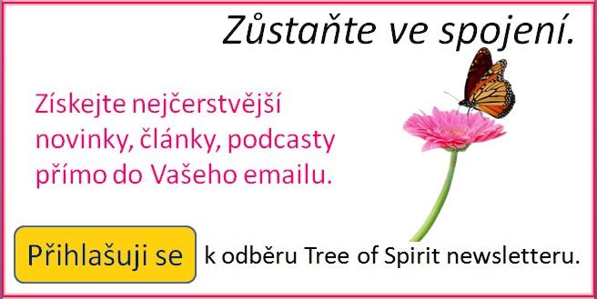 Newsletter-banner-1