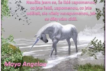 Maya_Angelou-citát