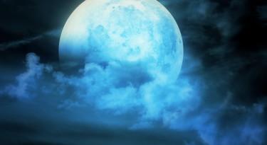 Modrý-měsíc_Tree-of-Spirit